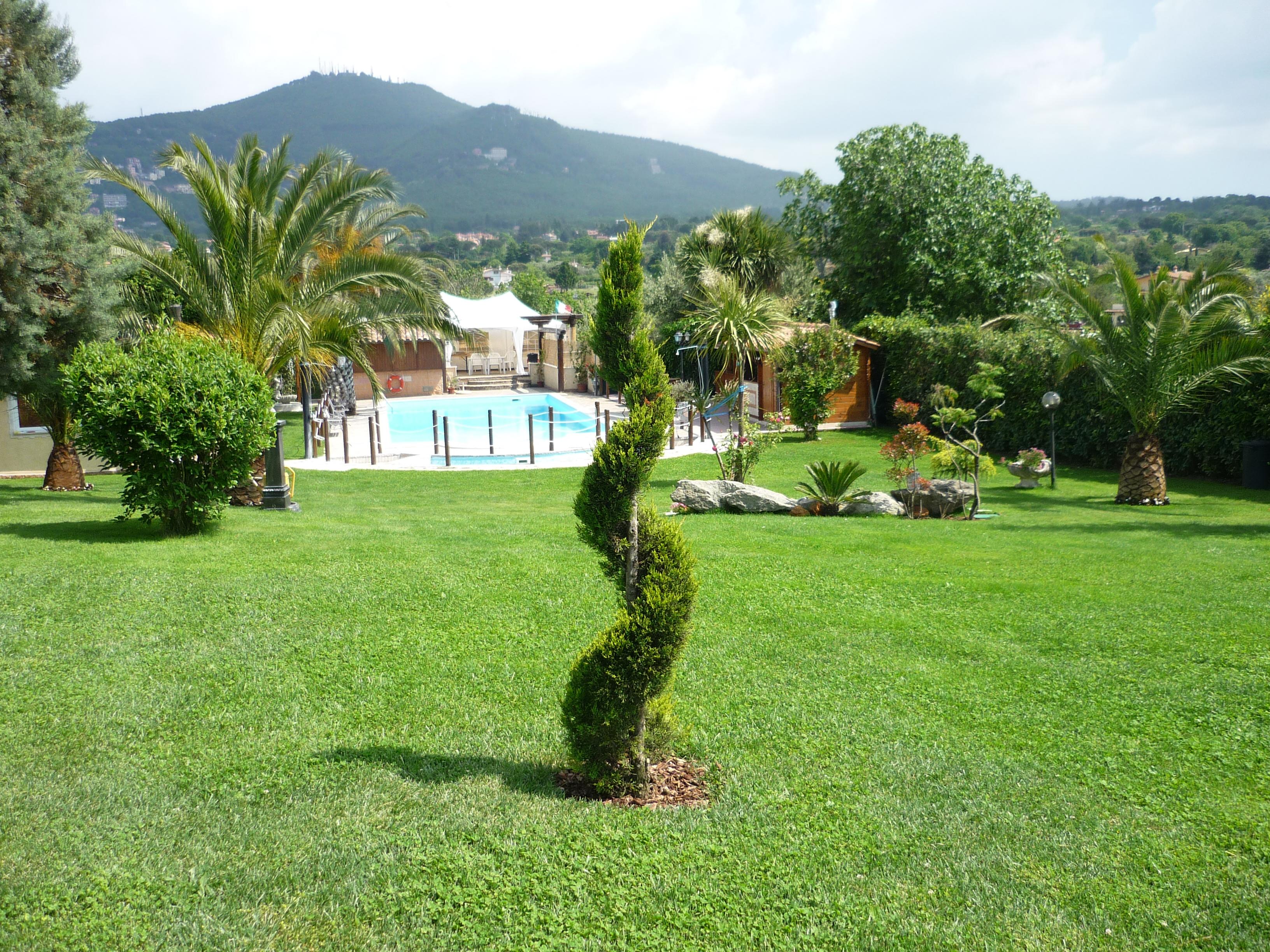 Affittasi location loasi miragu - Alberi da giardino piccoli ...