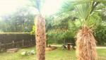 Oppidulum Resort
