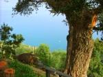 Magical Villa Sicily