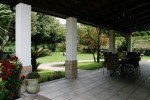 Wonderful garden for your party
